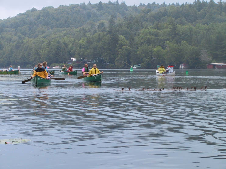 Group of Canoeists Headed into Lower Fish Creek Pond from Upper Saranac